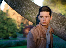 Attractive young male model outdoors in nature. Handsome young guy in fall (autumn) outdoors in nature, at dusk Stock Photos