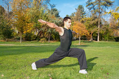 Attractive young man doing exercise in park stock images