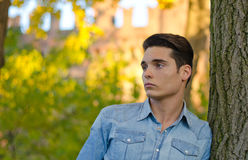 Attractive young man  outdoors in nature. Attractive young male model outdoors in nature leaning on tree Royalty Free Stock Photography