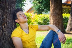 Attractive young man in park resting against tree. Attractive young man in park resting or sleeping against tree, relaxed in a sunny summer day royalty free stock photos