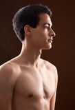Attractive Young Man Shirtless royalty free stock image