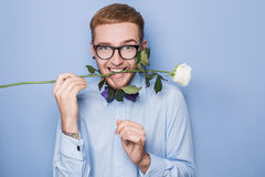 Attractive young man smiling with a white rose in his mouth. Date, birthday, Valentine. Studio portrait over blue background Royalty Free Stock Image