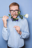 Attractive young man smiling with a white rose in his mouth. Date, birthday, Valentine. Studio portrait over blue background Royalty Free Stock Photo