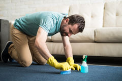 Concentrate cleaning the rug. Attractive young man trying to disappear a stain from the rug by brushing it hard with soap Stock Image