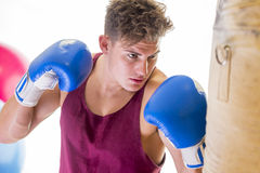 Attractive young man using a punching bag Royalty Free Stock Photo