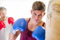 Attractive young man using a punching bag Royalty Free Stock Image