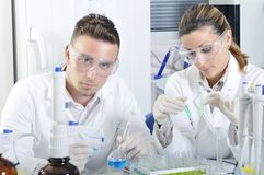 Attractive young PhD students scientists in the laboratory Stock Photo