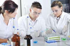 Attractive young PhD students scientists in the laboratory Royalty Free Stock Photo