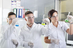 Attractive young PhD students scientists in the laboratory Stock Photography