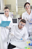 Attractive young PhD students scientists in the laboratory Stock Image