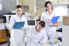 Attractive young PhD students scientists in the laboratory Royalty Free Stock Images