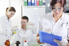 Attractive young PhD students scientists in the laboratory Royalty Free Stock Image
