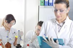 Attractive young PhD students scientists in the laboratory Royalty Free Stock Photos