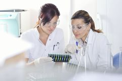 Attractive young PhD students scientists observing the color shift after the solution destillation in chemical laboratory Royalty Free Stock Photos
