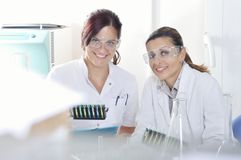 Attractive young PhD students scientists observing the color shift after the solution destillation in chemical laboratory Royalty Free Stock Photography