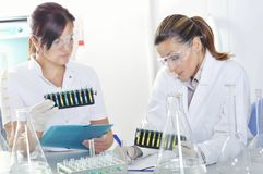 Attractive young PhD students scientists observing the color shift after the solution destillation in chemical laboratory Royalty Free Stock Photo