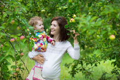 Attractive young pregnant woman holding her baby daughter stock photo