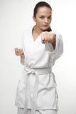 Attractive young sexy women in a karate pose. Attractive young sexy woman in a karate pose isolated on white Stock Photography