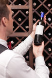 Attractive young sommelier is choosing perfect. Professional wine waiter is analyzing the quality of beverage. He is standing and holding a bottle of wine. The royalty free stock photos