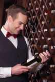 Attractive young sommelier is working with joy Royalty Free Stock Photo