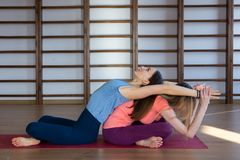 Attractive young sport girls are doing yoga together. Group training royalty free stock photo