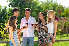 Attractive young teenagers partying outdoors. Standing in a group on the lawn in the garden in the summer sun enjoying a glass of red wine together stock photography