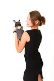 Attractive young woman with chihuahua isolated on white Royalty Free Stock Photography