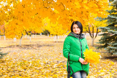 Attractive young woman collecting autumn leaves Stock Photos