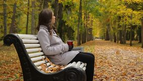 Attractive young woman drinks coffee from a cup while sitting on a bench in autumn park. Charming girl drinks coffee from a red cup on a bench in a picturesque stock footage