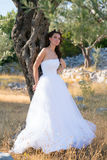 Attractive Young Woman Enjoying Her Time Outside In Olive Trees. Royalty Free Stock Images