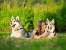 Attractive young woman lays on the grass with two funny siberian husky dogs. In the park stock photo