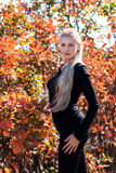 Attractive young woman with long beautiful blonde hair posing. Royalty Free Stock Photography