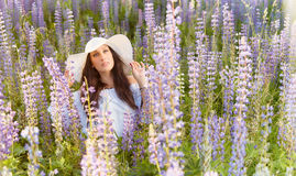 Attractive young woman and meadow Royalty Free Stock Photos