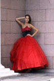 Attractive young woman in red dress Stock Photos