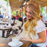 Young woman with a pug in a street cafe. Attractive young woman sits with a cute pug in the arms in a street cafe Royalty Free Stock Image