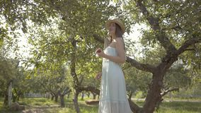 Attractive young woman in straw hat and long white dress looking at the camera holding apple standing on a ladder in the. Green summer garden. Harvest time stock footage