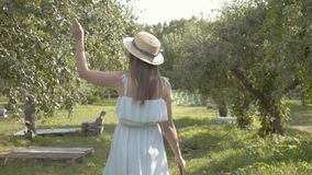 Attractive young woman in straw hat and long white dress walking through the green summer garden. Carefree rural life. Attractive young woman in a straw hat and stock footage