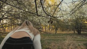 Attractive young woman in sweater, jeans is dance and spinning among blossom apple tree. Sunset, spring orchard and