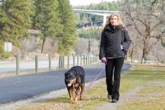 Woman walking the dog Stock Images