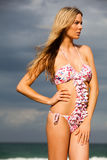 Attractive Young Woman Wearing a Bikini Royalty Free Stock Photos