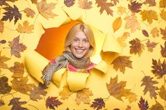 Attractive young woman wearing in fashionable seasonal clothes having Autumnal mood. Autumn blonde girl are getting. Ready for autumn sale. Girl wearing in royalty free stock images