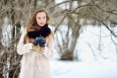 Attractive young woman in wintertime outdoor Royalty Free Stock Photos