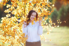 Attractive young woman in yellow autumn leaves, sunlight. Attractive pretty young woman in yellow autumn leaves, sunlight stock photography