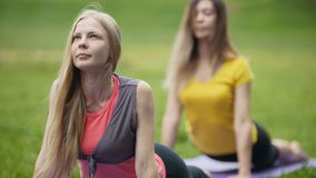 Attractive young women performs training for flexibility in the park stock video