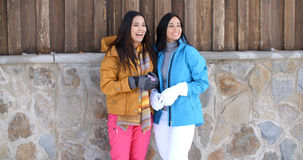 Attractive young women in stylish winter fashion Royalty Free Stock Image