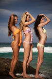 Attractive Young Women Wearing Bikinis Royalty Free Stock Images