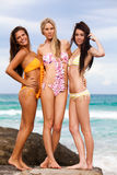 Attractive Young Women Wearing Bikinis. Three attractive young women wearing bikinis are standing on the rocks at the beach with their arms around each other royalty free stock photo