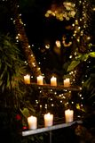 Attractively lit green tropical garden with candles and lights