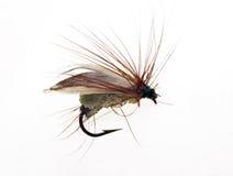 Attrait de pêche de mouche Image stock