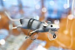 Attrait pour pêcher la souris grise Photo stock
